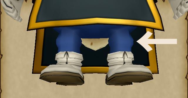 護りの盾の正装-詳細2